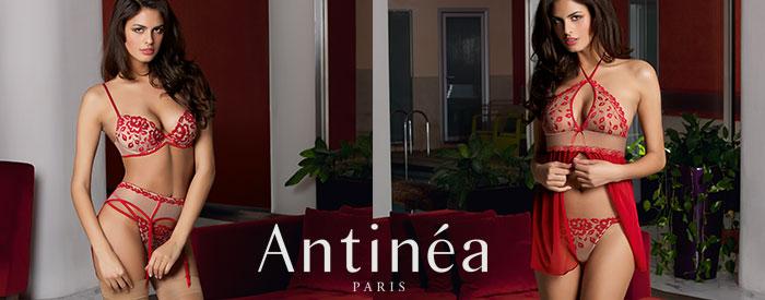 Antinea - Precieux Desir